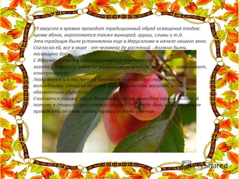 19 августа в храмах проходит традиционный обряд освящения плодов: кроме яблок, окропляются также виноград, груши, сливы и т.д. Эта традиция была установлена еще в Иерусалиме в начале нашего века. Согласно ей, все в мире - от человека до растений - до
