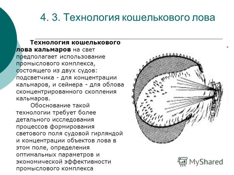 4. 3. Технология кошелькового лова Технология кошелькового лова кальмаров на свет предполагает использование промыслового комплекса, состоящего из двух судов: подсветчика - для концентрации кальмаров, и сейнера - для облова сконцентрированного скопле