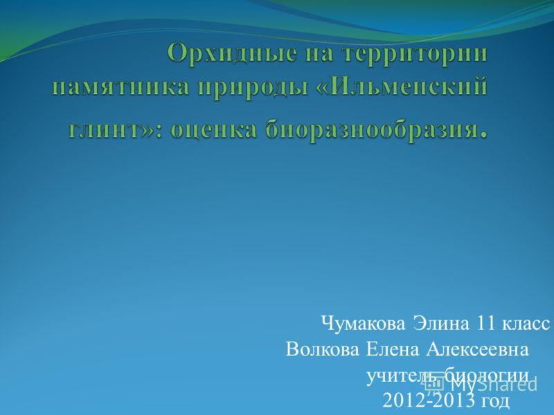 Чумакова Элина 11 класс Волкова Елена Алексеевна учитель биологии 2012-2013 год