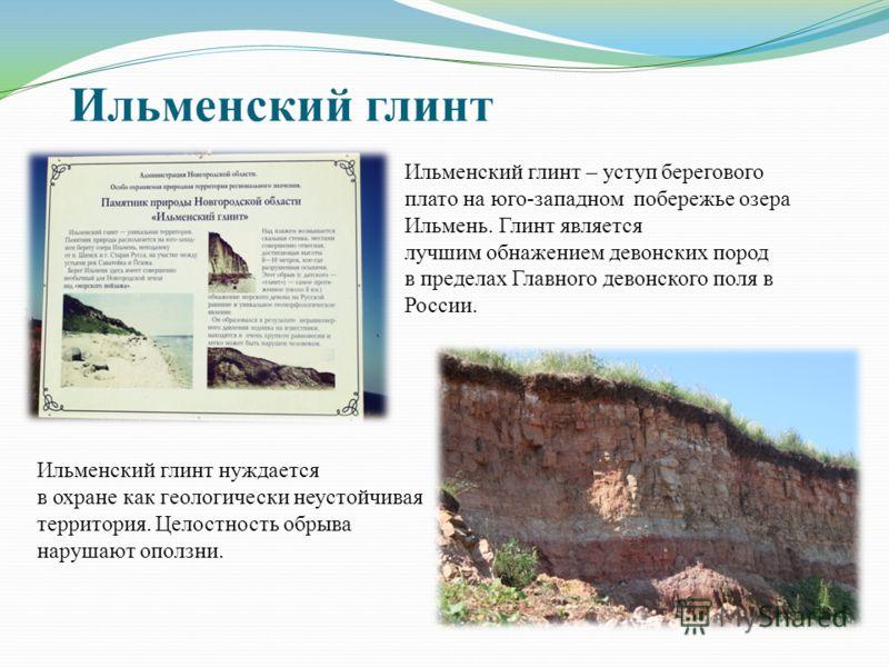 Ильменский глинт Ильменский глинт – уступ берегового плато на юго-западном побережье озера Ильмень. Глинт является лучшим обнажением девонских пород в пределах Главного девонского поля в России. Ильменский глинт нуждается в охране как геологически не