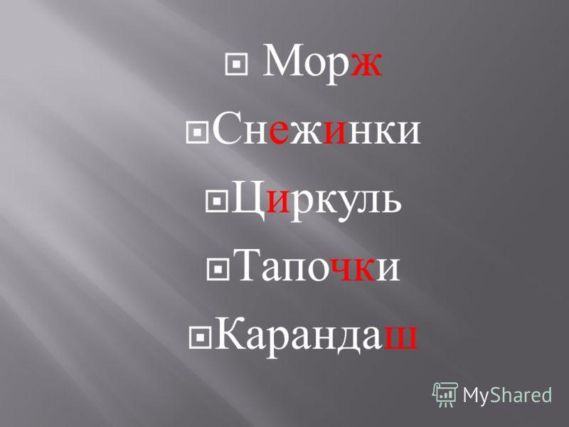 Морж Снежинки Циркуль Тапочки Карандаш