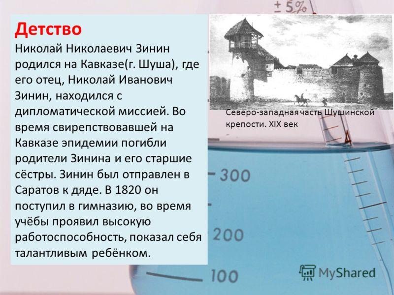 Детство Николай Николаевич Зинин родился на Кавказе(г. Шуша), где его отец, Николай Иванович Зинин, находился с дипломатической миссией. Во время свирепствовавшей на Кавказе эпидемии погибли родители Зинина и его старшие сёстры. Зинин был отправлен в