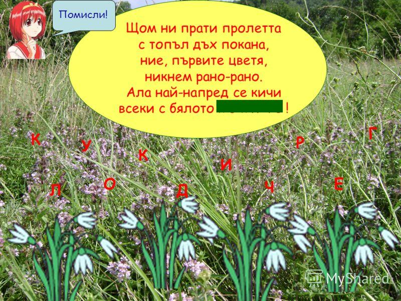 Щом ни прати пролетта с топъл дъх покана, ние, първите цветя, никнем рано-рано. Ала най-напред се кичи всеки с бялото к о к и ч е ! К О К И Ч Е Л Р Д У Г Помисли!