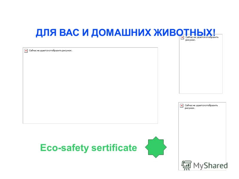 ДЛЯ ВАС И ДОМАШНИХ ЖИВОТНЫХ! Eco-safety sertificate