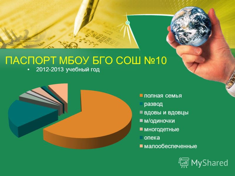 2012-2013 учебный год ПАСПОРТ МБОУ БГО СОШ 10