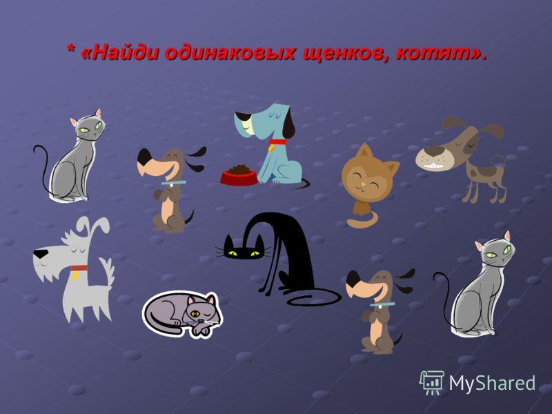 * «Найди одинаковых щенков, котят».