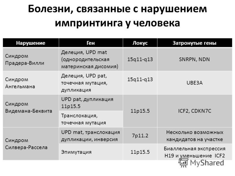 Болезни, связанные с нарушением импринтинга у человека НарушениеГенЛокусЗатронутые гены Синдром Прадера-Вилли Делеция, UPD mat (однородительская материнская дисомия) 15q11-q13SNRPN, NDN Синдром Ангельмана Делеция, UPD pat, точечная мутация, дупликаци