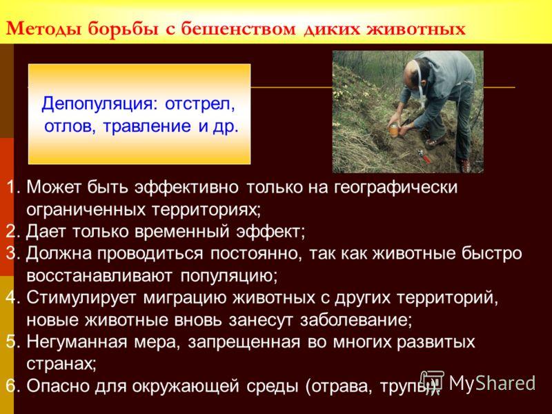 Методы борьбы с бешенством диких животных Депопуляция: отстрел, отлов, травление и др. 1.Может быть эффективно только на географически ограниченных территориях; 2.Дает только временный эффект; 3.Должна проводиться постоянно, так как животные быстро в