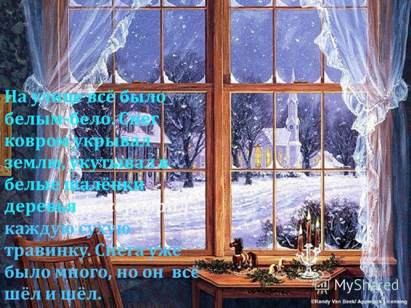 На улице всё было белым-бело. Снег ковром укрывал землю, укутывал в белые шалёнки деревья, посеребрил каждую сухую травинку. Снега уже было много, но он всё шёл и шёл.