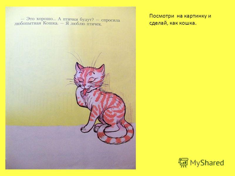 Посмотри на картинку и сделай, как кошка.
