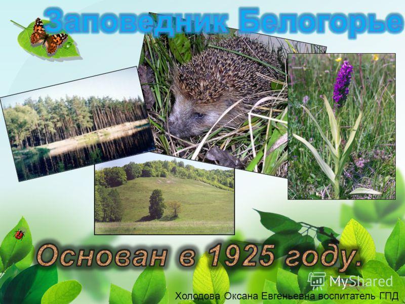 Холодова Оксана Евгеньевна воспитатель ГПД