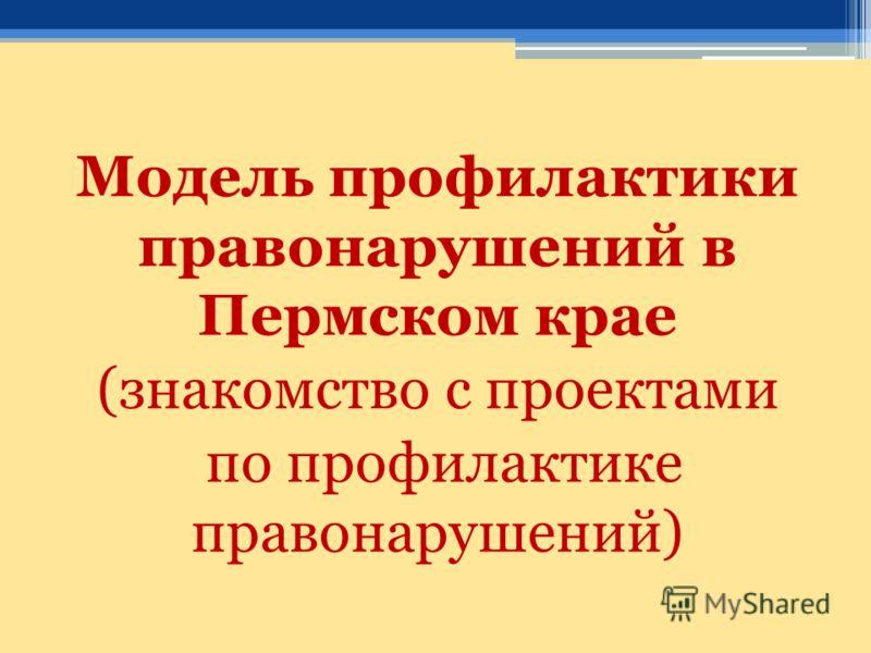 Модель профилактики правонарушений в Пермском крае (знакомство с проектами по профилактике правонарушений)