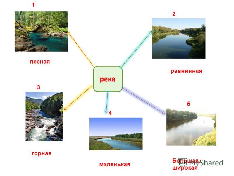 река 1 2 3 4 5 лесная равнинная горная маленькая Большая, широкая