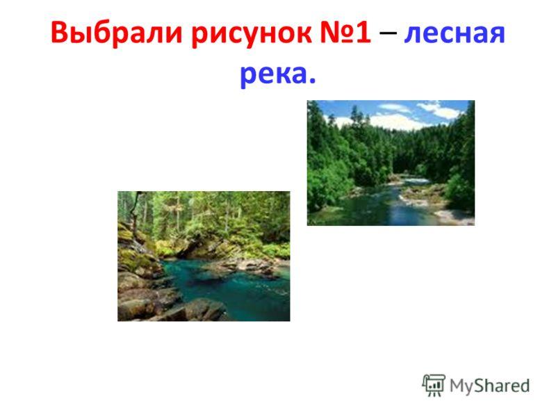 Выбрали рисунок 1 – лесная река.