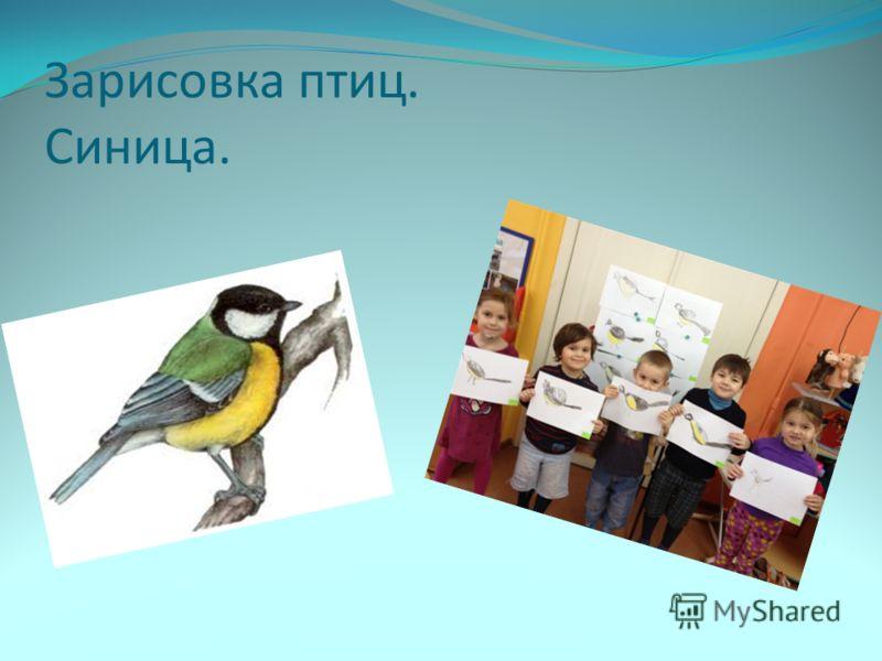 знакомство детей с птицами
