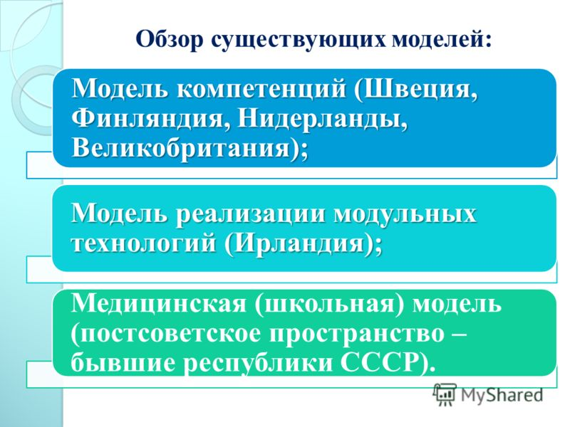 Обзор существующих моделей: Модель компетенций (Швеция, Финляндия, Нидерланды, Великобритания); Модель реализации модульных технологий (Ирландия); Медицинская (школьная) модель (постсоветское пространство – бывшие республики СССР).