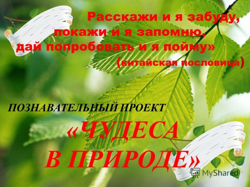 ГБДОУ ДЕТСКИЙ САД 2 ПЕТРОГРАДСКОГО РАЙОНА СПб, 2012 АВТОРЫ ТЯМУШЕВА ОЛЬГА ЕВГЕНЬЕВНА СЕРОВА ОЛЬГА ЕВГЕНЬЕНВА ЛЕЙБЕНЗОН АЛЛА ВЛАДИМИРОВНА а