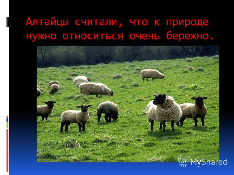 Алтайцы считали, что к природе нужно относиться очень бережно.