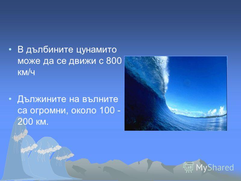 В дълбините цунамито може да се движи с 800 км/ч Дължините на вълните са огромни, около 100 - 200 км.