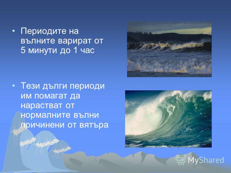 Периодите на вълните варират от 5 минути до 1 час Тези дълги периоди им помагат да нарастват от нормалните вълни причинени от вятъра