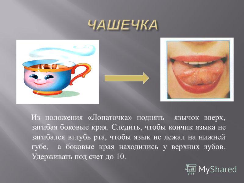 Из положения « Лопаточка » поднять язычок вверх, загибая боковые края. Следить, чтобы кончик языка не загибался вглубь рта, чтобы язык не лежал на нижней губе, а боковые края находились у верхних зубов. Удерживать под счет до 10.