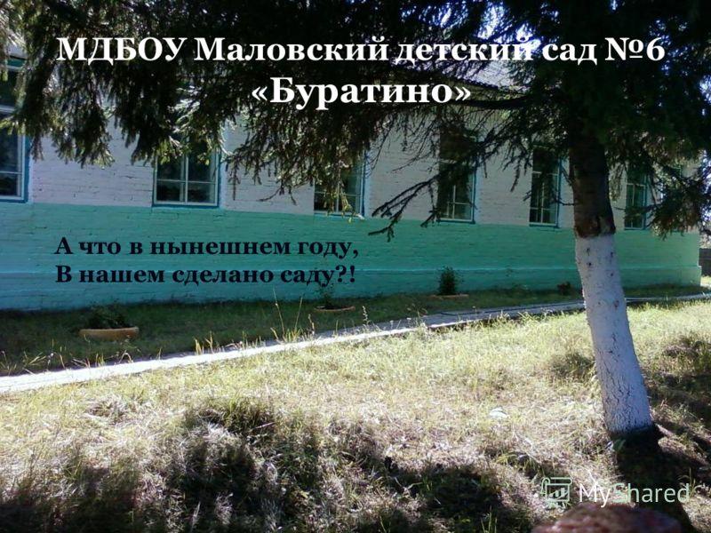 МДБОУ Маловский детский сад 6 « Буратино » А что в нынешнем году, В нашем сделано саду?!