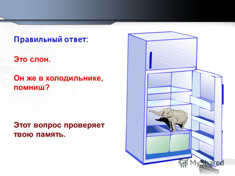 Правильный ответ: Это слон. Он же в холодильнике, помниш? Этот вопрос проверяет твою память.