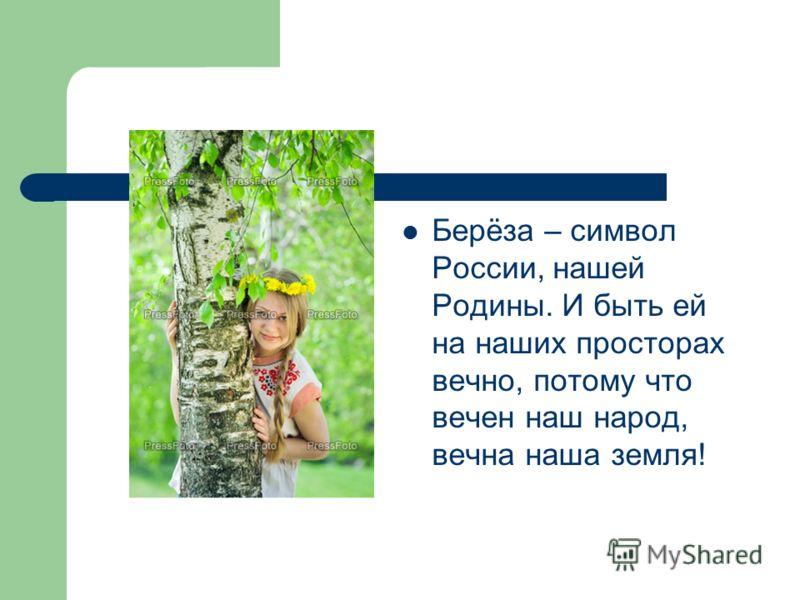 Берёза – символ России, нашей Родины. И быть ей на наших просторах вечно, потому что вечен наш народ, вечна наша земля!