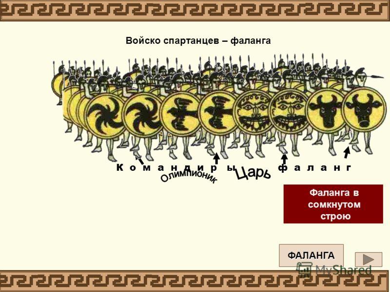 К о м а н д и р ы ф а л а н г Фаланга в открытом построении Войско спартанцев – фаланга Фаланга в сомкнутом строю ФАЛАНГА