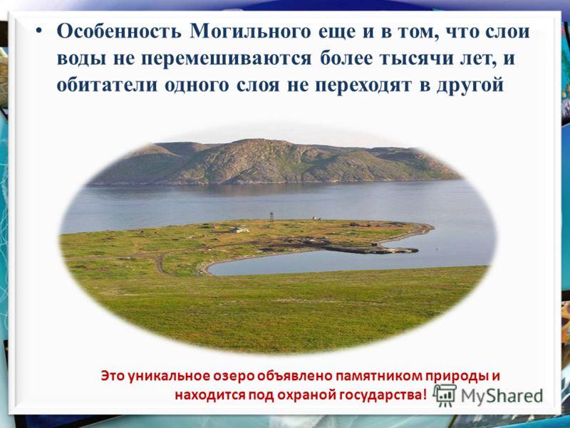 Это уникальное озеро объявлено памятником природы и находится под охраной государства! Особенность Могильного еще и в том, что слои воды не перемешиваются более тысячи лет, и обитатели одного слоя не переходят в другой