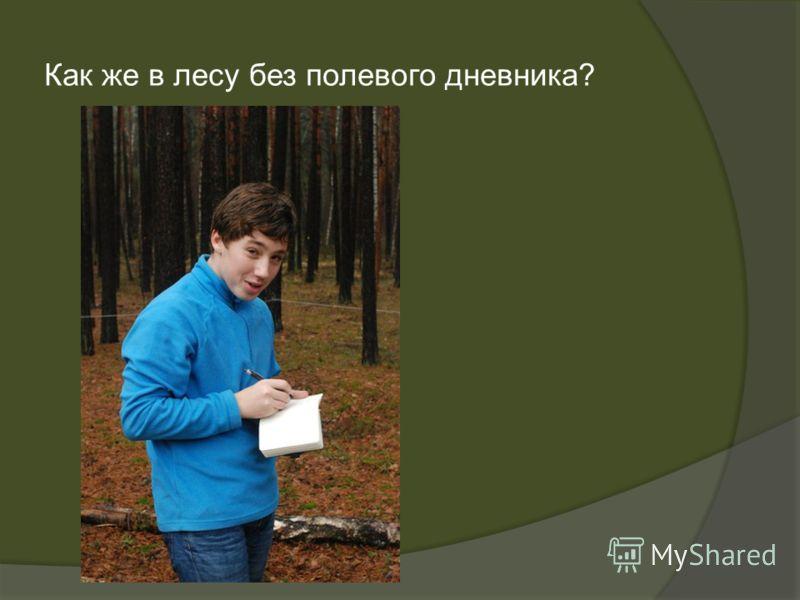 Как же в лесу без полевого дневника?