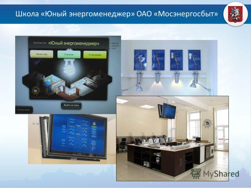 Школа «Юный энергоменеджер» ОАО «Мосэнергосбыт»