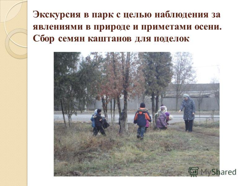 Экскурсия в парк с целью наблюдения за явлениями в природе и приметами осени. Сбор семян каштанов для поделок