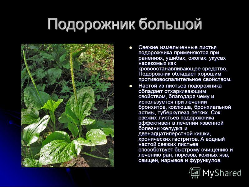 Пиперазин У Вет Медицине Инструкция По Применению