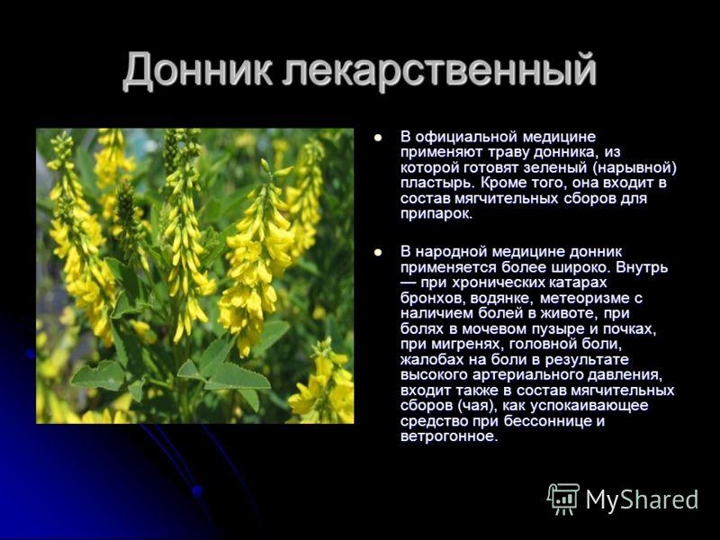 Донник лекарственный В официальной медицине применяют траву донника, из которой готовят зеленый (нарывной) пластырь. Кроме того, она входит в состав мягчительных сборов для припарок. В официальной медицине применяют траву донника, из которой готовят