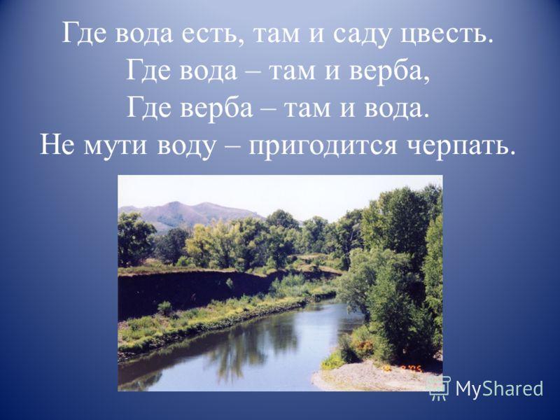Где вода есть, там и саду цвесть. Где вода – там и верба, Где верба – там и вода. Не мути воду – пригодится черпать.