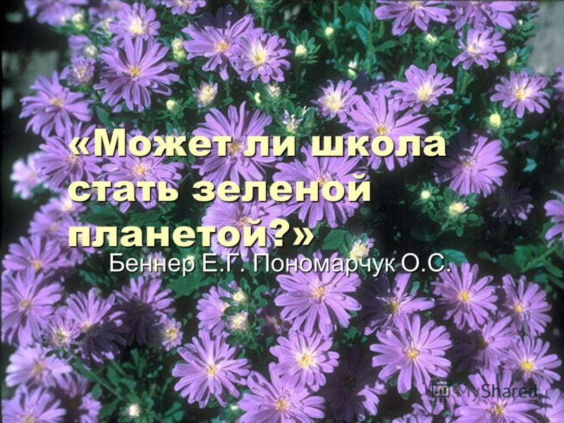 «Может ли школа стать зеленой планетой?» Беннер Е.Г. Пономарчук О.С. Беннер Е.Г. Пономарчук О.С.