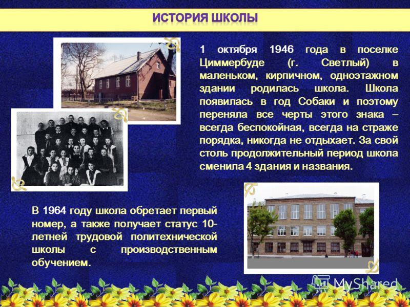 1 октября 1946 года в поселке Циммербуде (г. Светлый) в маленьком, кирпичном, одноэтажном здании родилась школа. Школа появилась в год Собаки и поэтому переняла все черты этого знака – всегда беспокойная, всегда на страже порядка, никогда не отдыхает