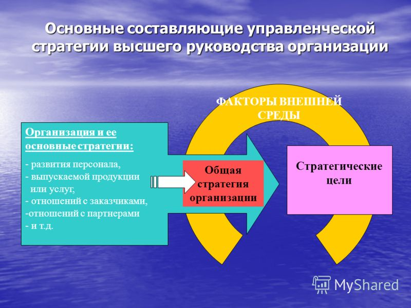 Основные составляющие управленческой стратегии высшего руководства организации Общая стратегия организации ФАКТОРЫ ВНЕШНЕЙ СРЕДЫ Организация и ее основные стратегии: - развития персонала, - - выпускаемой продукции или услуг, - - отношений с заказчика
