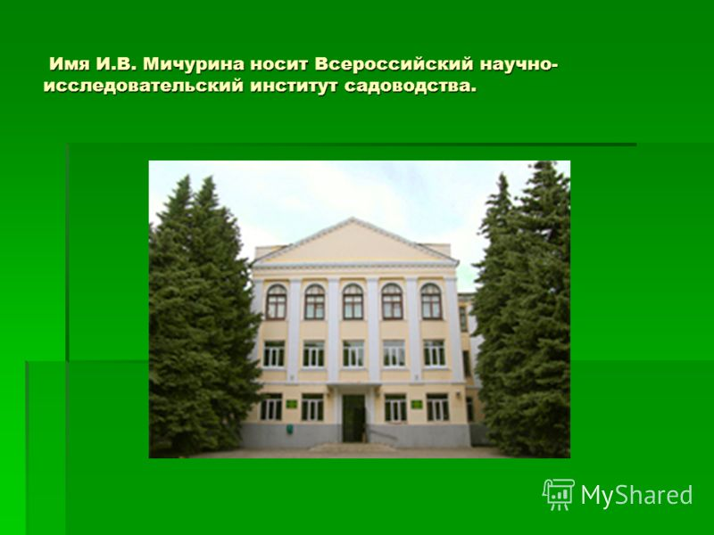 Имя И.В. Мичурина носит Всероссийский научно- исследовательский институт садоводства. Имя И.В. Мичурина носит Всероссийский научно- исследовательский институт садоводства.