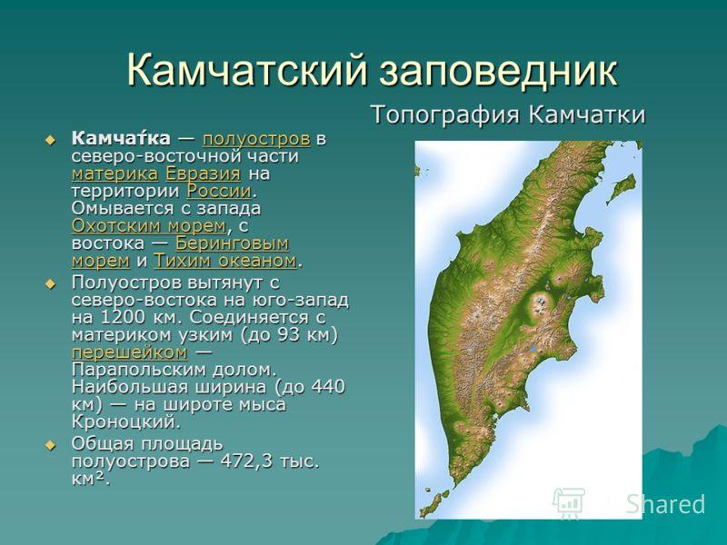 Камчатский заповедник Камча́тка полуостров в северо-восточной части материка Евразия на территории России. Омывается с запада Охотским морем, с востока Беринговым морем и Тихим океаном. Камча́тка полуостров в северо-восточной части материка Евразия н