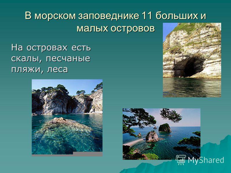 В морском заповеднике 11 больших и малых островов На островах есть скалы, песчаные пляжи, леса