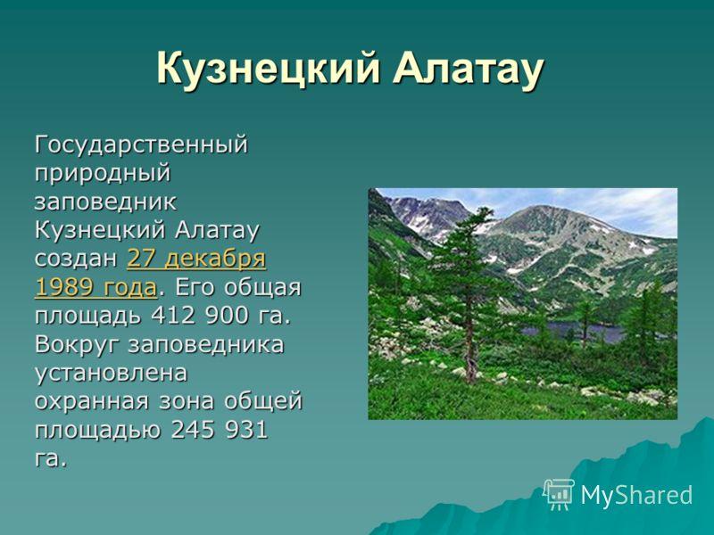 Кузнецкий Алатау Кузнецкий Алатау Государственный природный заповедник Кузнецкий Алатау создан 27 декабря 1989 года. Его общая площадь 412 900 га. Вокруг заповедника установлена охранная зона общей площадью 245 931 га. 27 декабря 1989 года27 декабря