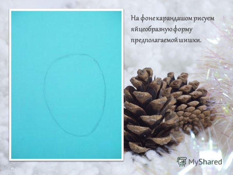 На фоне карандашом рисуем яйцеобразную форму предполагаемой шишки.