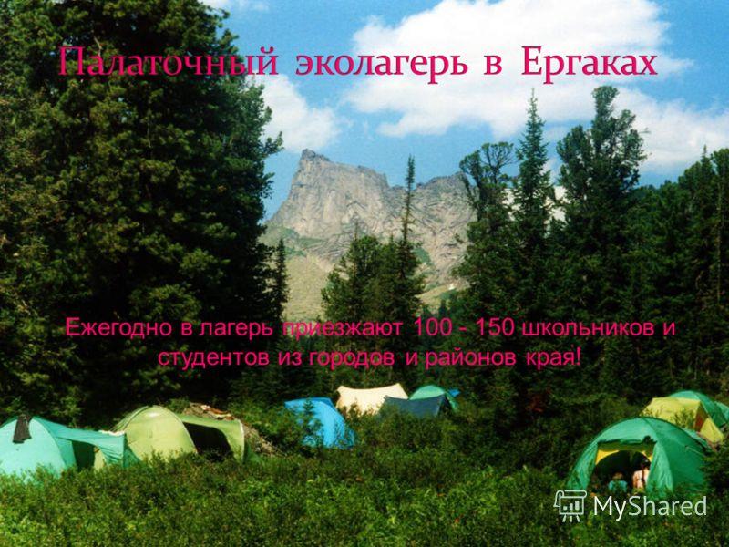 Ежегодно в лагерь приезжают 100 - 150 школьников и студентов из городов и районов края!
