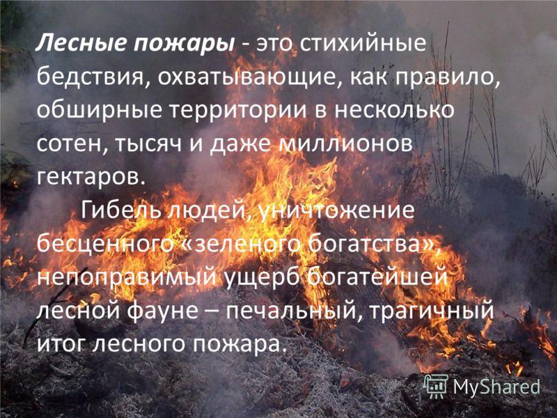 Лесные пожары - это стихийные бедствия, охватывающие, как правило, обширные территории в несколько сотен, тысяч и даже миллионов гектаров. Гибель людей, уничтожение бесценного «зеленого богатства», непоправимый ущерб богатейшей лесной фауне – печальн