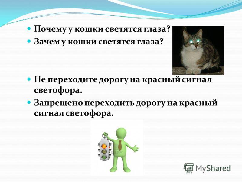 Почему у кошки светятся глаза? Зачем у кошки светятся глаза? Не переходите дорогу на красный сигнал светофора. Запрещено переходить дорогу на красный сигнал светофора.