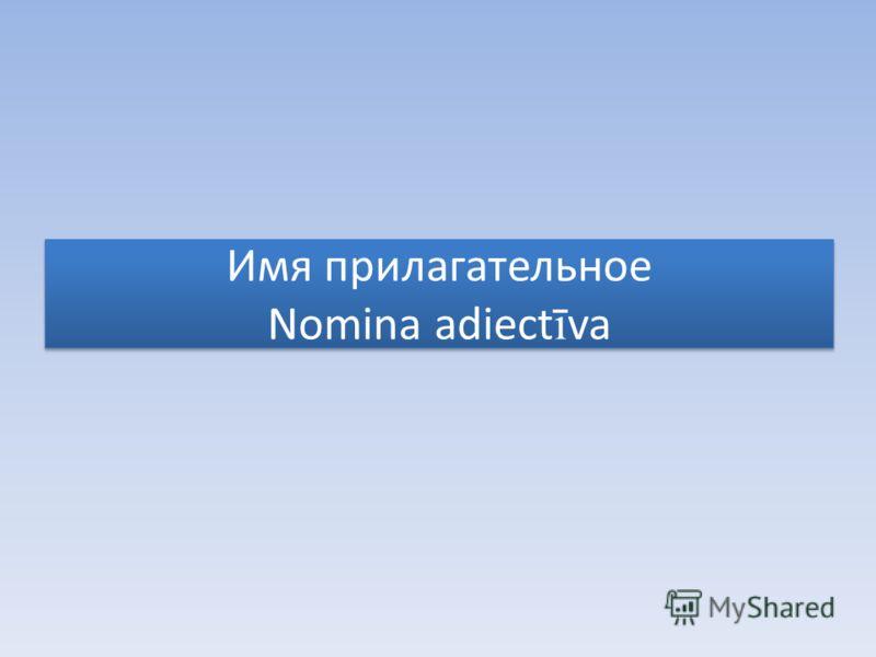Имя прилагательное Nomina adiect ī va