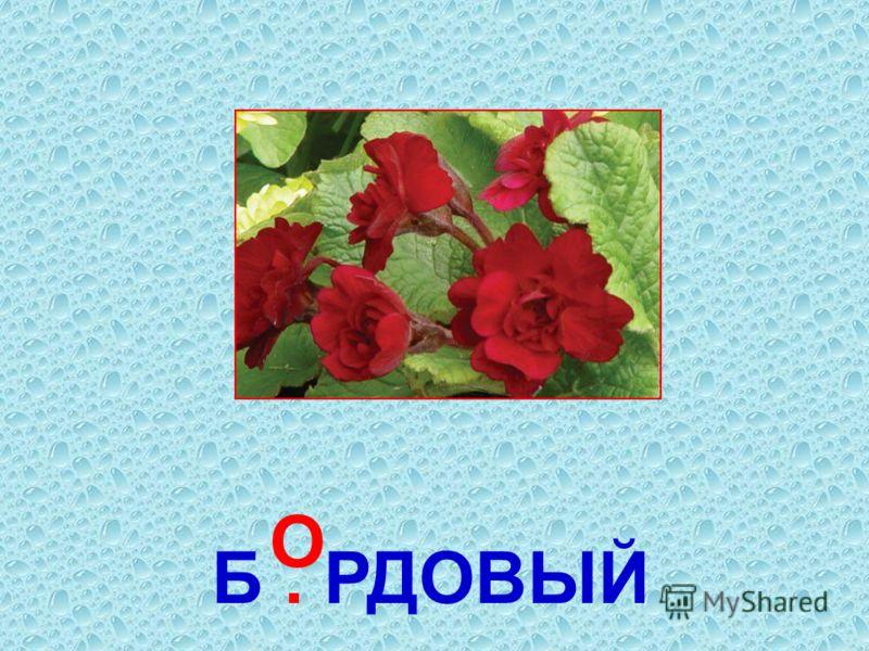 Б. РДОВЫЙ О
