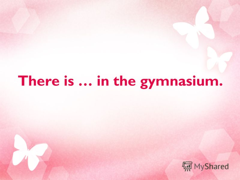 There is … in the gymnasium.